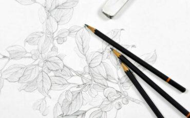 2021 Summer – Creative Sketching